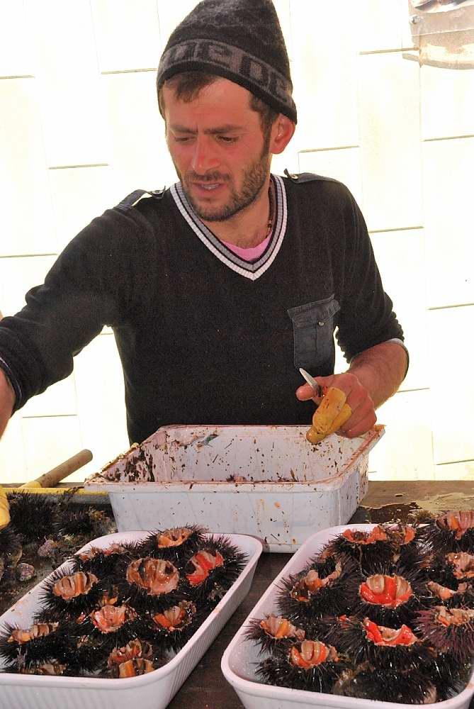 www.delightfullyitaly.com_Gallipoli_1