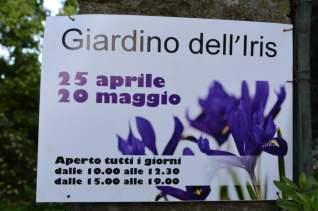 Florence Iris Garden_280